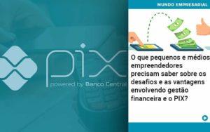 O Que Pequenos E Médios Empreendedores Precisam Saber Sobre Os Desafios E As Vantagens Envolvendo Gestão Financeira E O Pix Organização Contábil Lawini - PV Assessoria Contábil | Contabilidade no Rio de Janeiro
